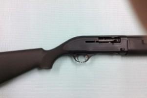 Hatsan Escort S/A Shotgun Image