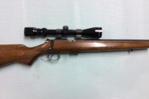 CZ .22lr Rifle Image