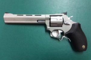 Taurus .22lr Revolver Image