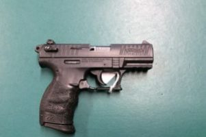 Walther P22Q Pistol Image