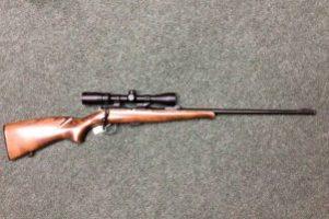 CZ .22 Rifle Image